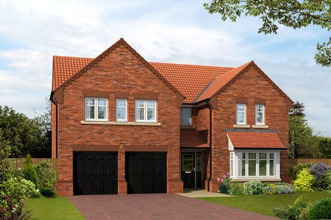 "Thumbnail Detached house for sale in ""The Dunstanburgh"" at Shireoaks Common, Shireoaks, Worksop"