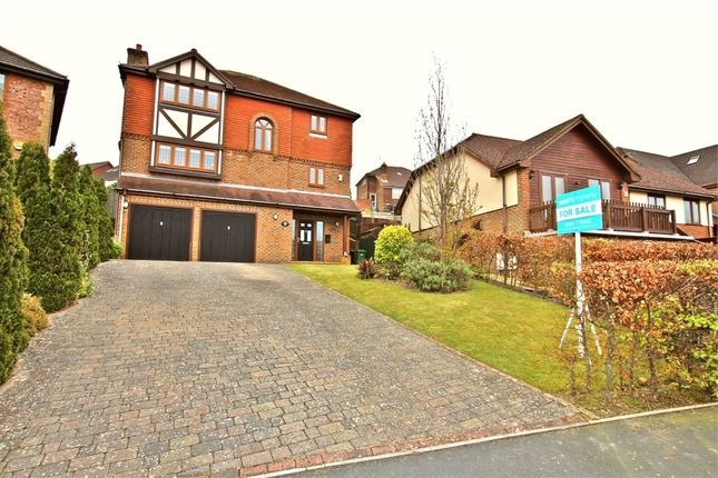 Thumbnail Detached house for sale in Truman Drive, St Leonards-On-Sea, East Sussex