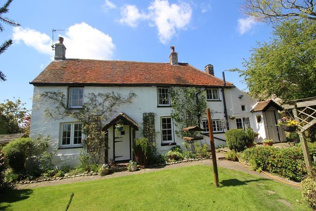Thumbnail Cottage for sale in Hankham Street, Hankham
