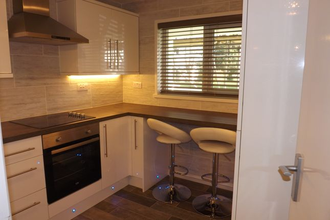 Thumbnail Flat to rent in St Lukes Road, Torquay
