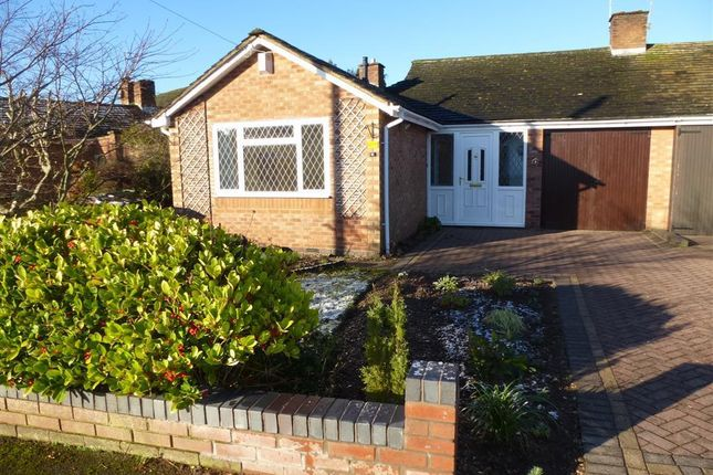 Thumbnail Bungalow to rent in Blythe Avenue, Balsall Common, Coventry