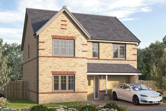 "Thumbnail Detached house for sale in ""The Sudbury"" at Chilton, Ferryhill"