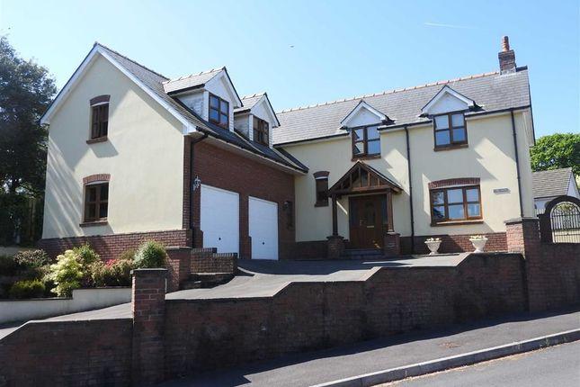 Thumbnail Detached house for sale in Trem-Y-Ddol, Newcastle Emlyn, Carmarthenshire