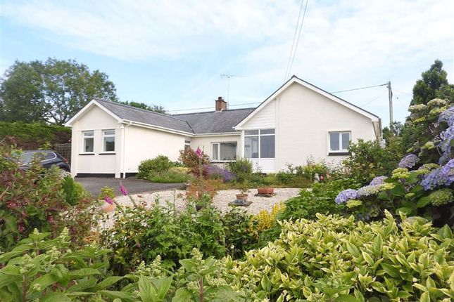 Thumbnail Detached bungalow for sale in Brynhoffnant, Llandysul