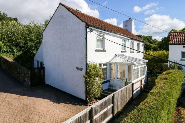 Thumbnail Cottage for sale in Radway Street, Bishopsteignton, Teignmouth