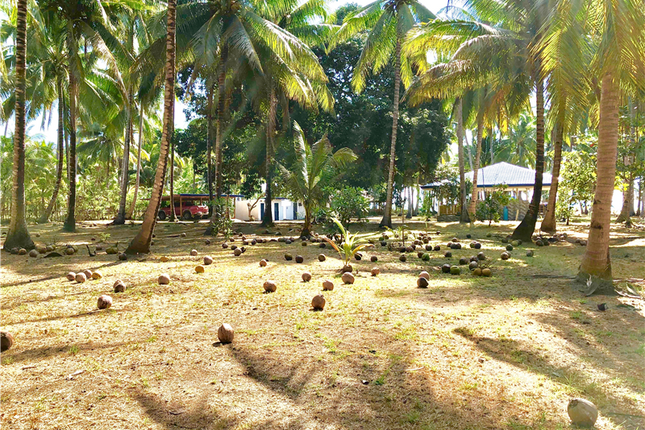Land for sale in Aborlan, Palawan, Philippines