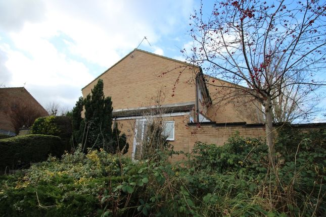 Thumbnail Property to rent in Hawthorns, Hartley, Longfield