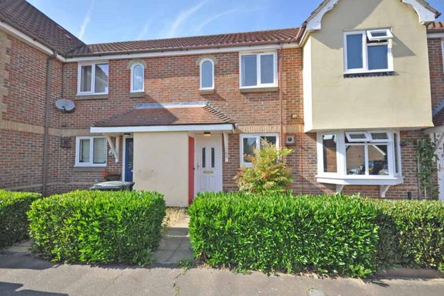 Thumbnail Terraced house to rent in Pochard Way, Great Notley, Braintree