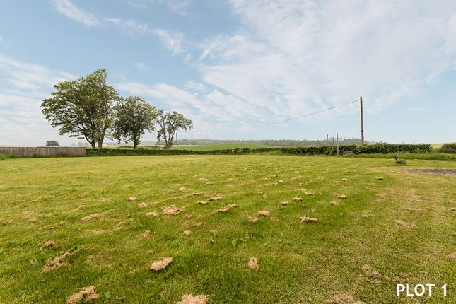 Thumbnail Land for sale in Jackstone Steadings, Bankfoot, Perth, Perthshire