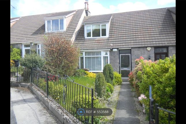 Thumbnail Terraced house to rent in Mosman Place, Aberdeen
