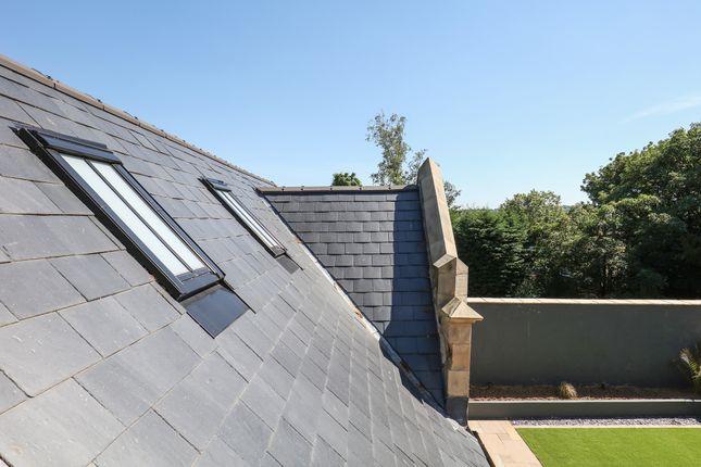 Stonework - Roof Detail