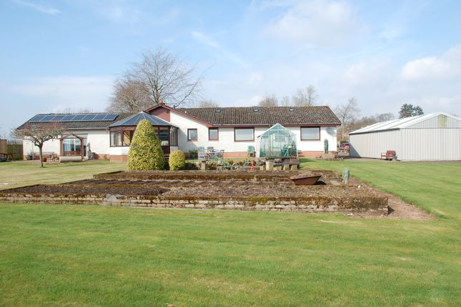 Thumbnail Detached bungalow for sale in South Street, Blairgowrie