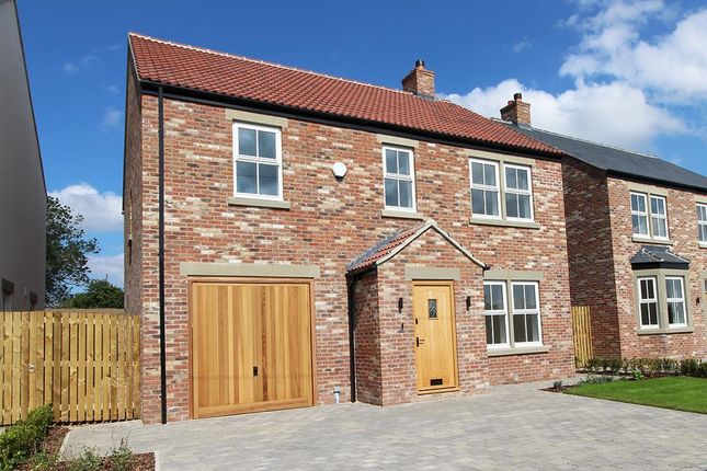 Thumbnail Detached house for sale in 12 The Green, Pickhill, Thirsk