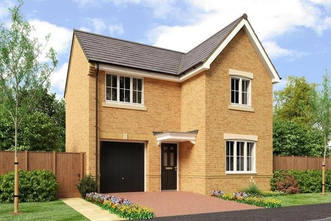 Thumbnail Detached house to rent in Poppy Drive, Blyth