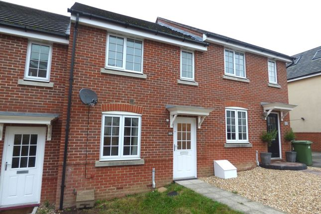 2 bed terraced house to rent in Thyme Avenue, Whiteley, Fareham
