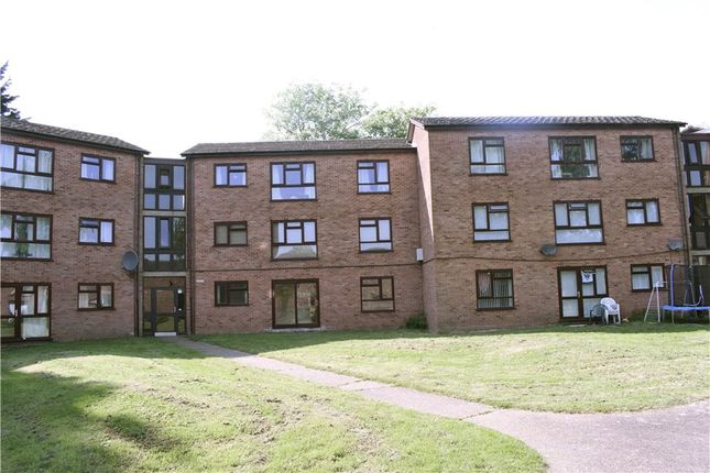 Thumbnail Flat for sale in Russet Grove, Norwich