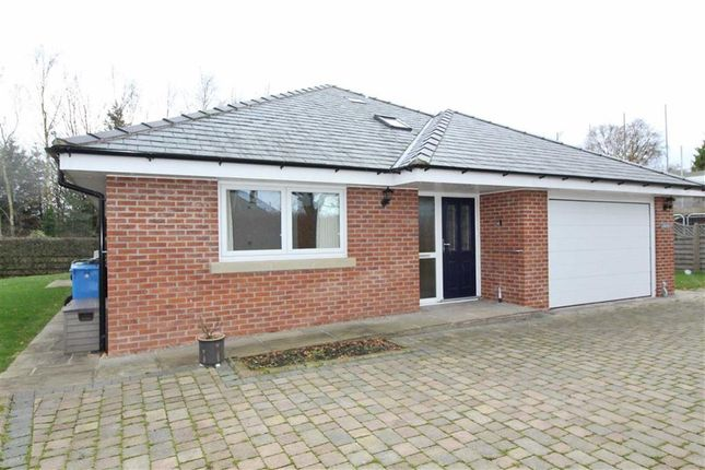 Thumbnail Detached bungalow to rent in Castle Lane, Garstang, Preston