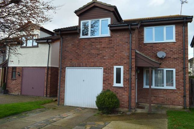 Thumbnail Detached house to rent in Staplegrove, Southend On Sea, Essex