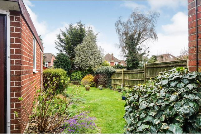 Rear Garden of Winchester Road, Upper Shirley, Southampton SO16