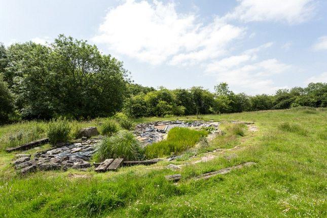 Picture No. 24 of Southfield Grange, Appleton Roebuck, York YO23