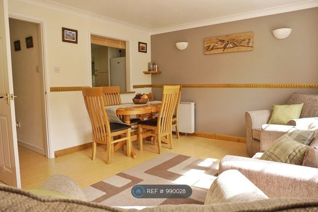 Thumbnail Flat to rent in Wye Rapids Cottages, Symonds Yat