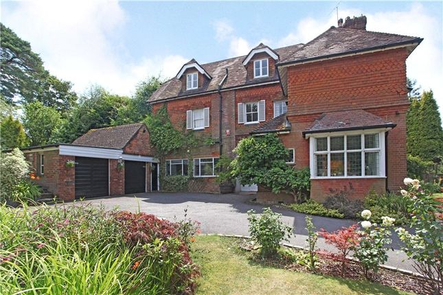 Thumbnail Semi-detached house for sale in Grayswood Road, Haslemere, Surrey