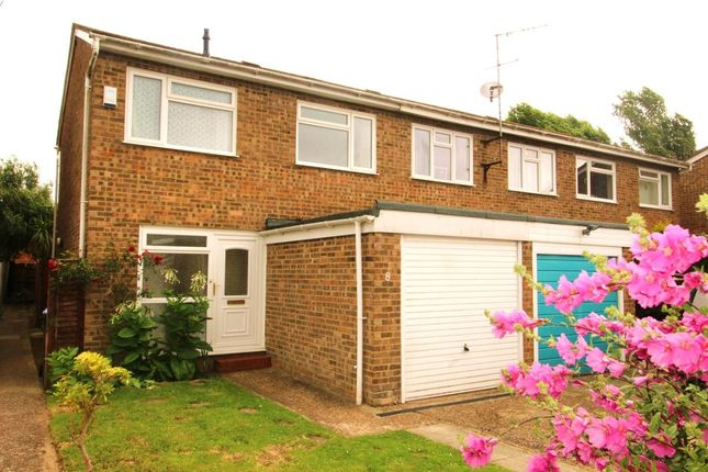 Thumbnail Semi-detached house to rent in Willow Crescent, Worthing