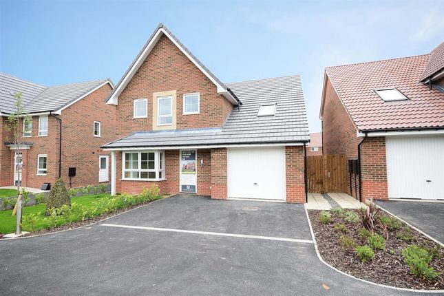Thumbnail Detached house for sale in Hereford Way, Boroughbridge, York