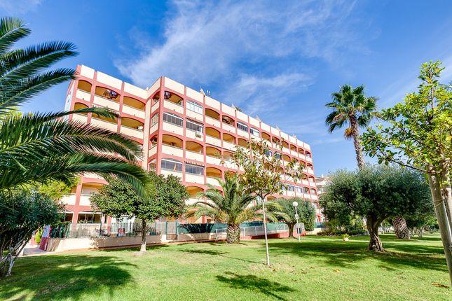 Apartment for sale in Torremar V1, Torrevieja, Alicante, Valencia, Spain