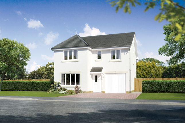 "Thumbnail Detached house for sale in ""Dukeswood"" at Earl Matthew Avenue, Arbroath"