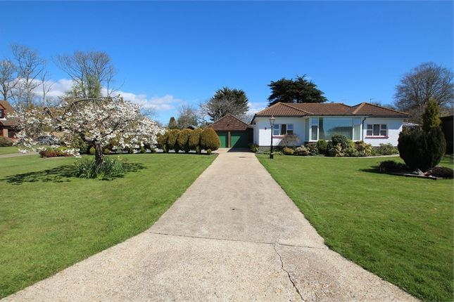 Thumbnail Detached bungalow for sale in Clover Lea, Grange Road, Hastings, East Sussex