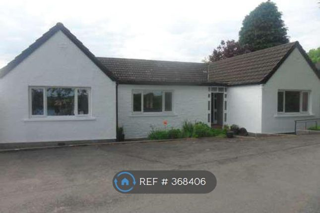 Thumbnail Bungalow to rent in Carlingwark Street, Castle Douglas