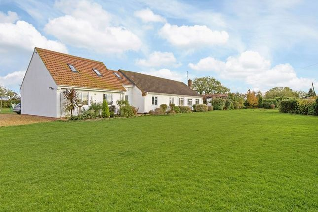 Thumbnail Equestrian property for sale in The Paddocks, Jekils Bank, Holbeach St Johns, Lincolnshire