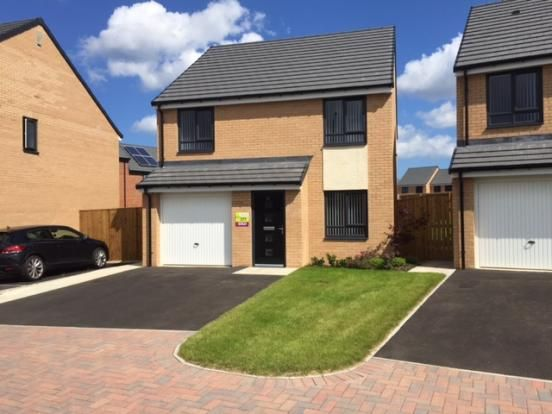 Thumbnail Detached house to rent in Mersey Road, Redcar