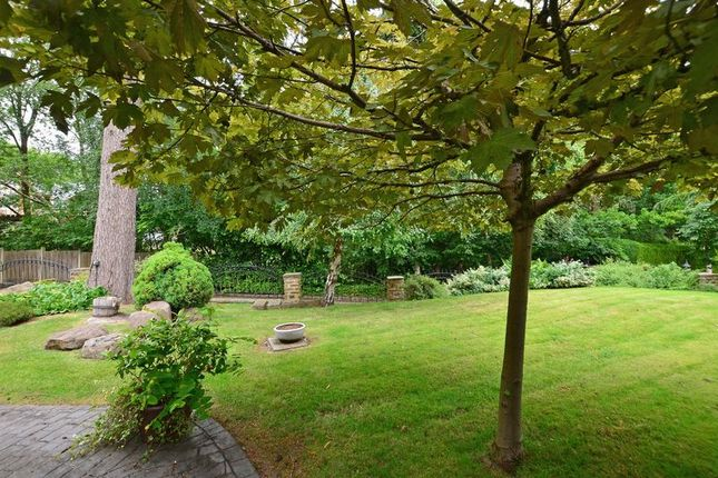 Front Garden of Forest Edge, Whirlow, Sheffield S11