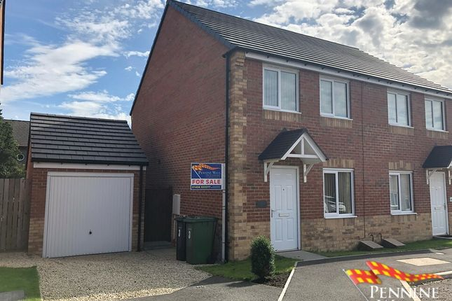 Thumbnail Semi-detached house for sale in Gibson Close, Haltwhistle, Northumberland