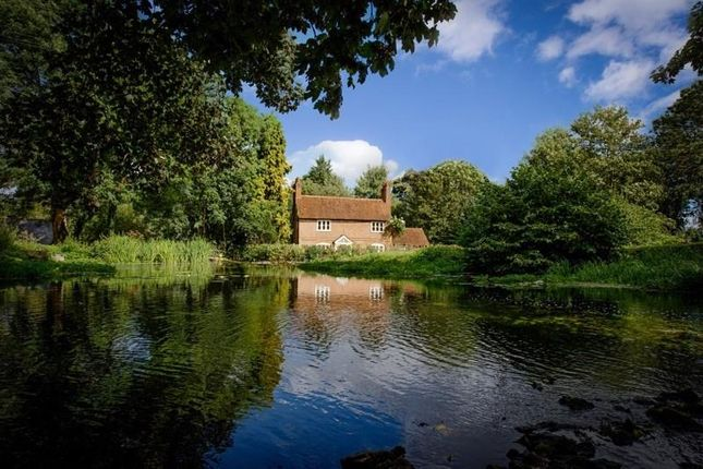Thumbnail Detached house to rent in Hatfield Park, Hatfield