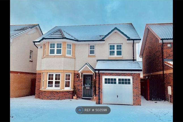 Thumbnail Detached house to rent in Duffshill Drive, Portlethen, Aberdeen