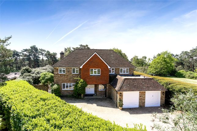 Thumbnail Detached house for sale in Walkers Ridge, Camberley, Surrey