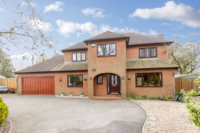 Thumbnail Detached house for sale in Thornicombe, Blandford Forum, Dorset