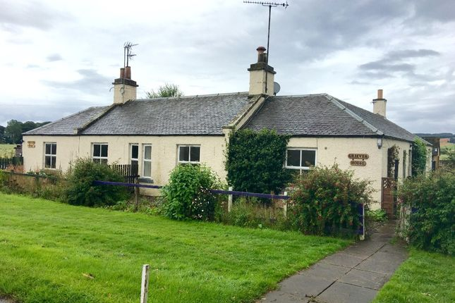 Semi-detached house to rent in Haughs Of Kinnaird, Brechin, Angus