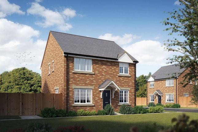 "4 bedroom detached house for sale in ""The Knightsbridge"" at Maes Dewi Pritchard, Bridgend"