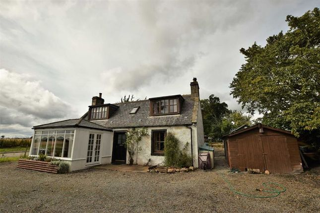 Thumbnail Cottage for sale in Tain