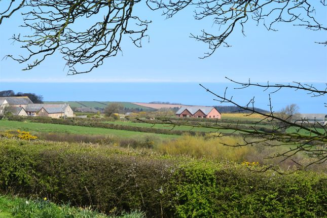 Thumbnail Cottage for sale in Higher Clovelly, Bideford
