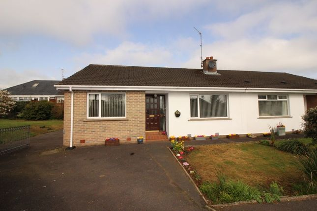 Thumbnail Bungalow for sale in Leydene Court, Lisburn