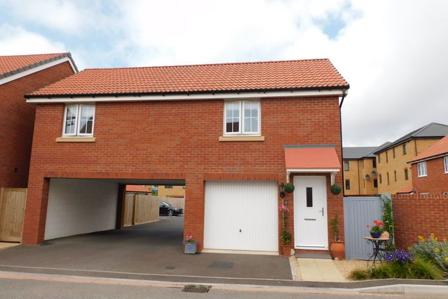 2 bed detached house to rent in Osprey Avenue, Seaton EX12