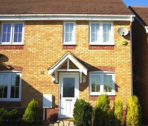 Thumbnail Semi-detached house to rent in Farriers Way, Houghton Regis, Dunstable