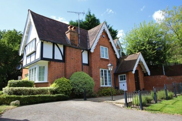 Thumbnail Property to rent in Debden Road, Loughton