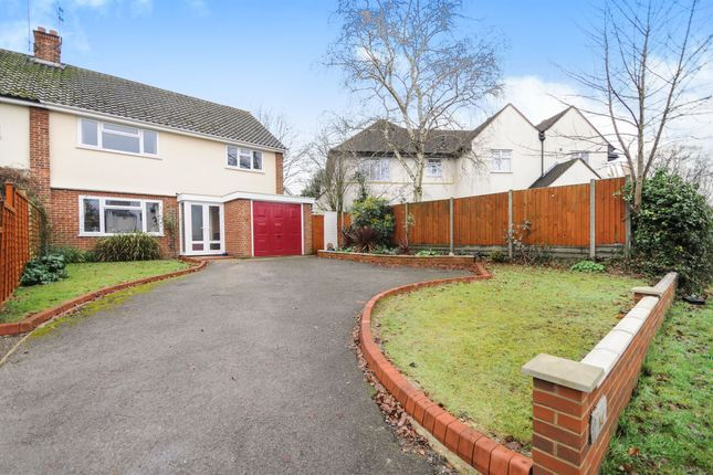 Thumbnail Semi-detached house for sale in Elm Road, Chelmsford