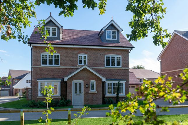 Thumbnail Detached house for sale in Howland Road, Marden, Kent